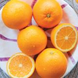 Sunkist High Brix Navel Orange [Large 72 pcs]
