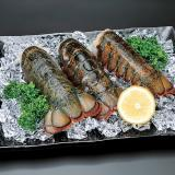 Fresh Homard Lobster Tail [7pcs]