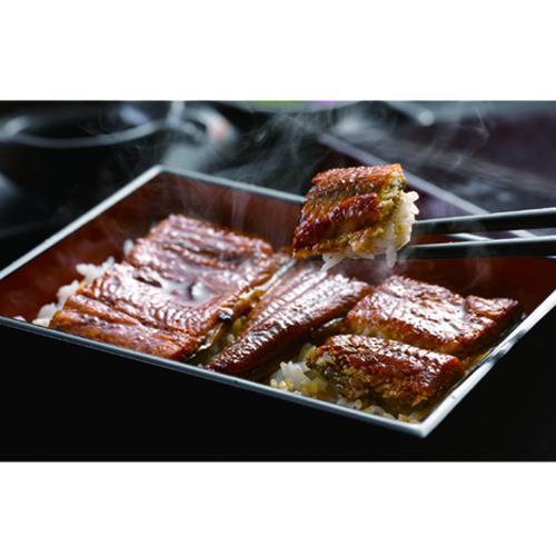 Grilled Eel(Cut)